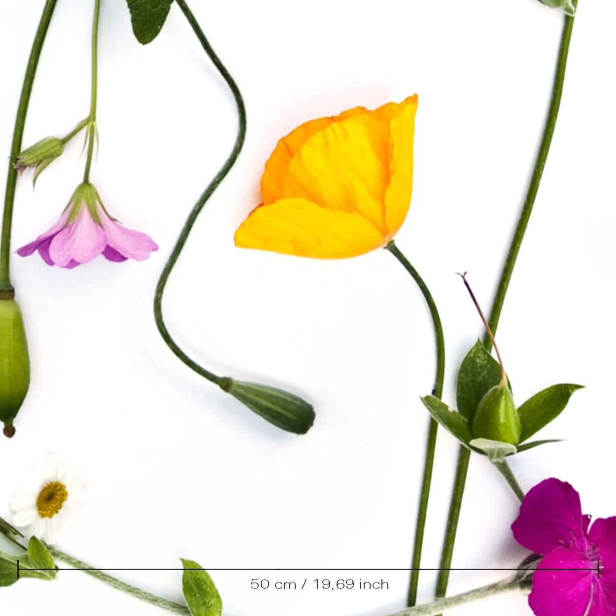 Wall covering flowers leaves riverside yellow poppy muurbloem muurbloem design studio mightylinksfo
